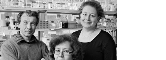 Prof. Tatiana Petrova – Prof. Brenda R. Kwak – Mauro Delorenzi