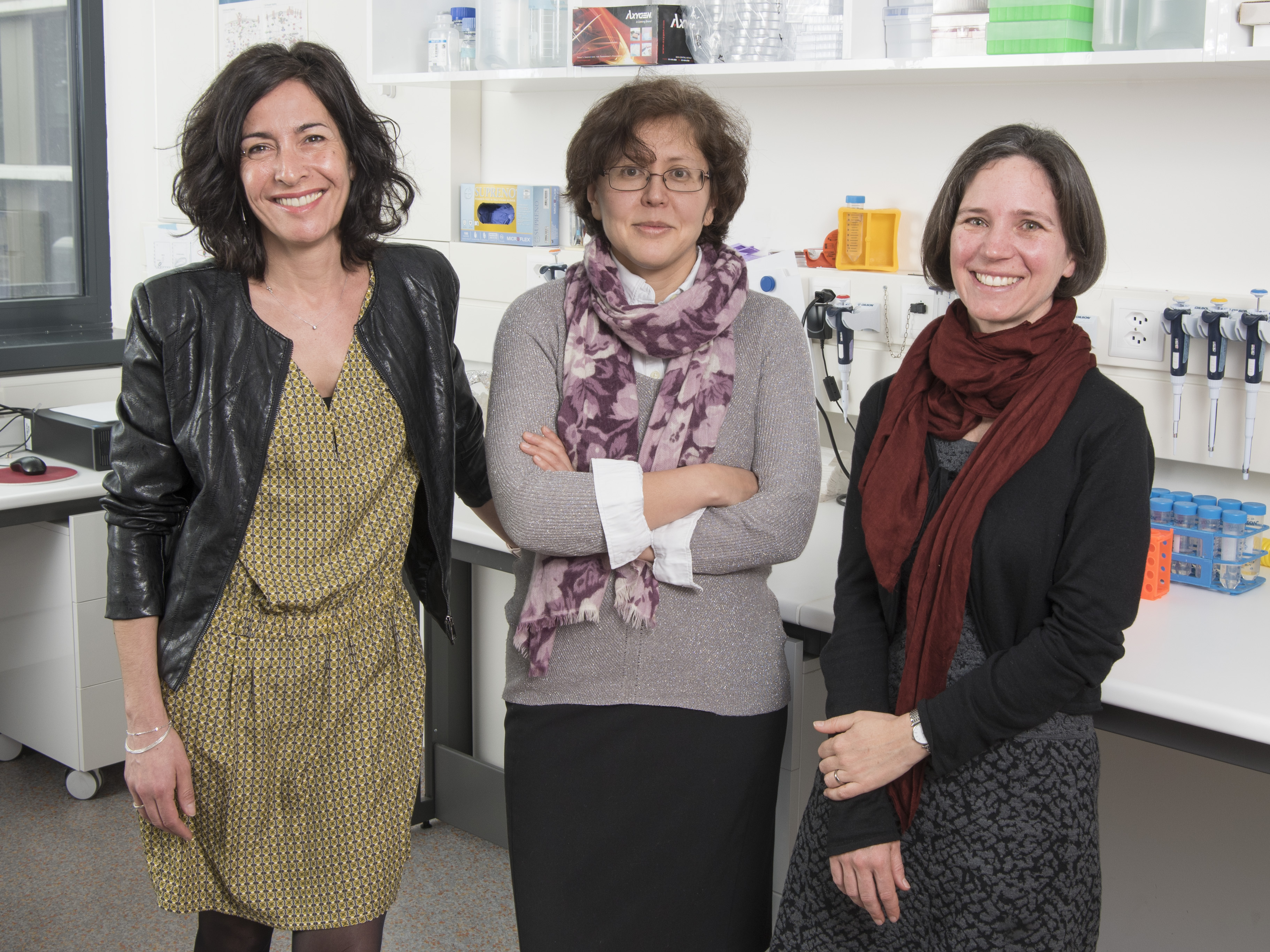 Sclérose en plaques et cholestérol: le chemin de la trahison